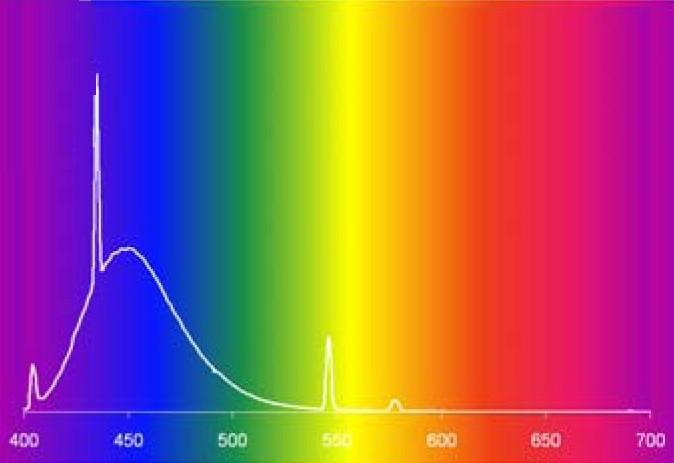 Mivel az ultraibolya nm a pikkelysömör kezelésére szolgál - Állatok