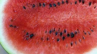 görögdinnye pikkelysömör kezelésére